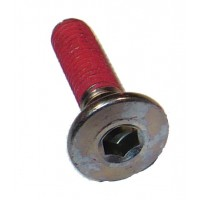 Brake Disc Mounting Bolt